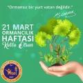21 Mart Ormancılık Haftası